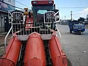 金达威4YZP-2C玉米收获机