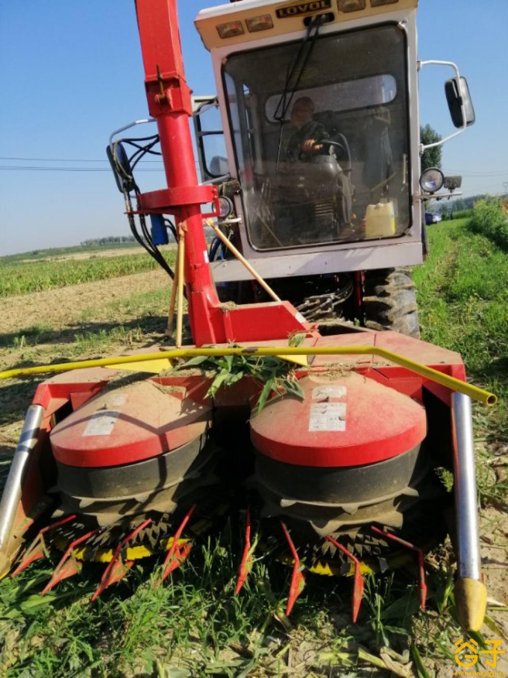 雷沃玉米青贮机