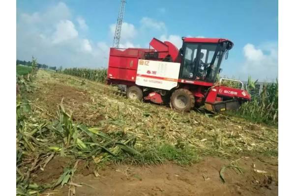 春雨4YZP-2玉米收割机