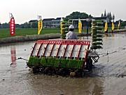 洋馬9行柴油高速插秧機