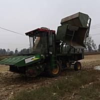 金九源4YZB-4自走式穗莖兼收玉米收獲機